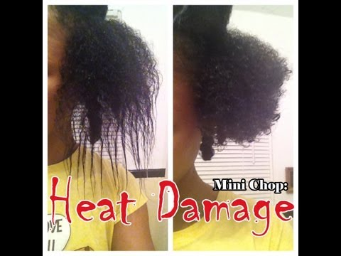 Hairfinity Growing Kinks Coils And Curls Delectable How To Get Curl Pattern Back